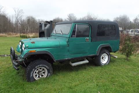1981 Jeep CJ-8 for sale in Lowellville, OH