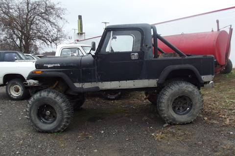 1982 Jeep CJ-8 for sale in Lowellville, OH