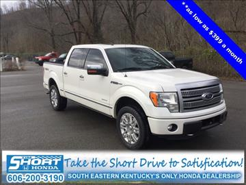 2011 Ford F-150 for sale in Ivel, KY