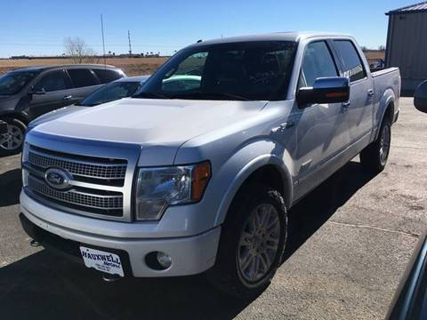 2011 Ford F-150 for sale in Oakley, KS