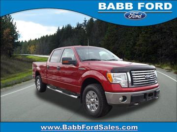 2010 Ford F-150 for sale in Reed City, MI