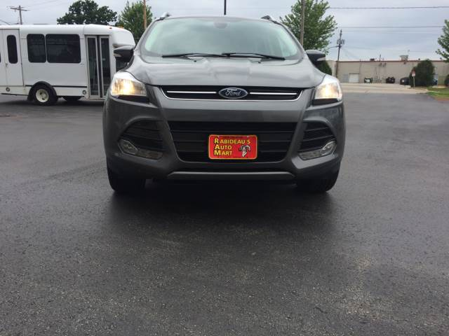 2014 Ford Escape for sale at RABIDEAU'S AUTO MART in Green Bay WI