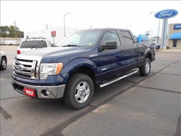 2011 Ford F-150 for sale in Ogallala, NE