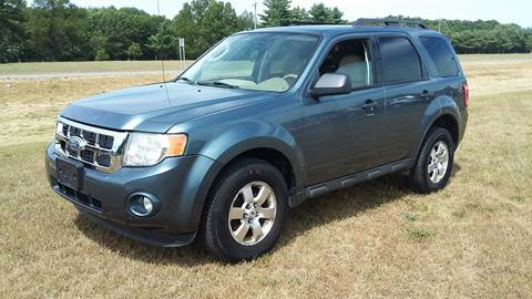 2010 Ford Escape for sale in Howard City, MI