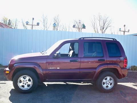 2002 Jeep Liberty for sale at Chaddock Auto Sales in Rochester MN