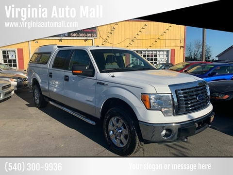 2011 Ford F-150 for sale at Virginia Auto Mall in Woodford VA