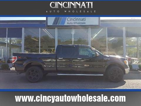 2010 Ford F-150 for sale in Loveland, OH
