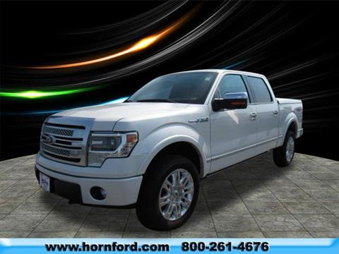 2014 Ford F-150 for sale in Brillion, WI