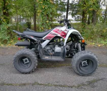 2019 Yamaha Raptor for sale in Conneaut Lake, PA