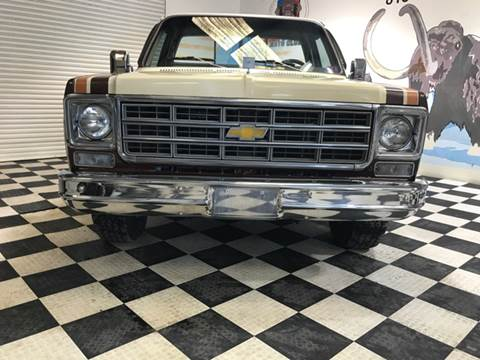 1977 Chevrolet C/K 10 Series for sale at Monmars Auto Club in Tampa FL