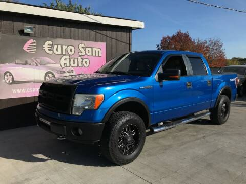 2009 Ford F-150 for sale at Euro Auto in Overland Park KS