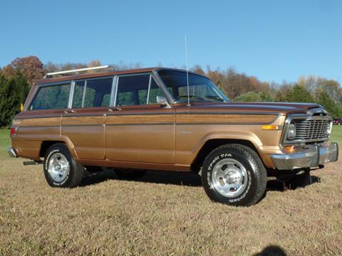 1979 Jeep Wagoneer for sale in Johnstown, PA