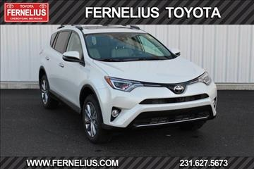 2017 Toyota RAV4 for sale in Cheboygan, MI