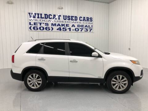 2011 Kia Sorento for sale at Wildcat Used Cars in Somerset KY