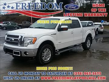 2011 Ford F-150 for sale in Pounding Mill, VA