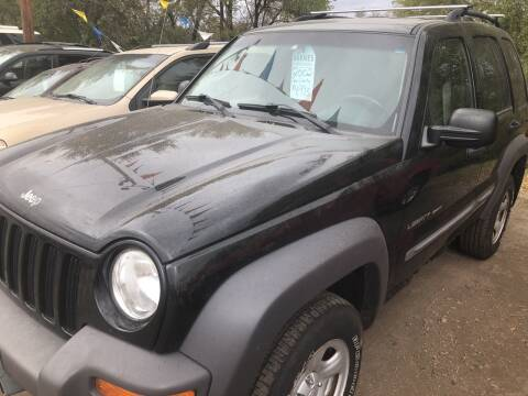 2002 Jeep Liberty for sale at BARNES AUTO SALES in Mandan ND