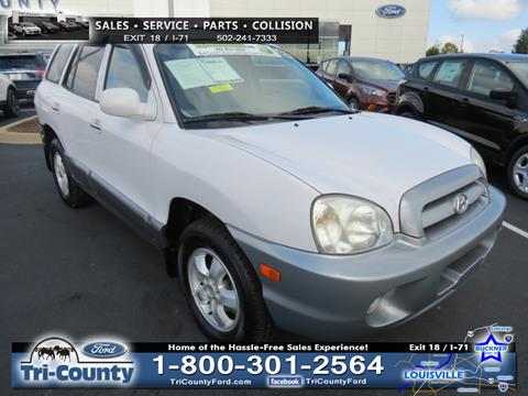 2005 Hyundai Santa Fe for sale in Buckner, KY