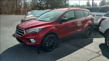 2017 Ford Escape for sale in Marshall, MI