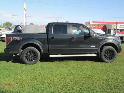 2013 Ford F-150 for sale in Emmetsburg IA