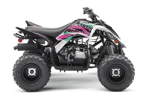 2019 Yamaha Raptor