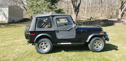 1980 Jeep CJ-7 for sale in Lake Geneva, WI