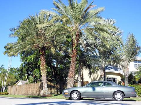 1998 Buick Riviera for sale at M.D.V. INTERNATIONAL AUTO CORP in Fort Lauderdale FL