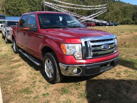 2010 Ford F-150 for sale in Knoxville, TN