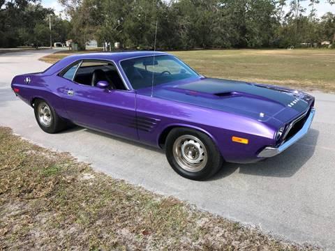 1973 Dodge Challenger for sale at Terra Motors LLC in Jacksonville FL