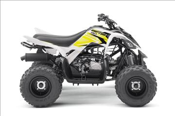 2017 Yamaha Raptor