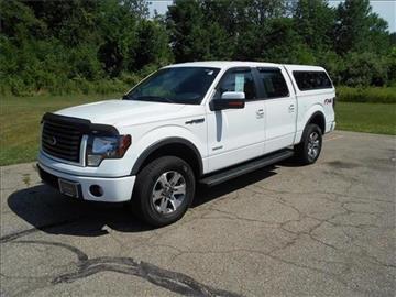 2012 Ford F-150 for sale at Michigan Direct Auto Sales of Jonesville in Jonesville MI