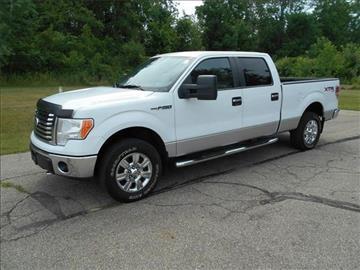 2010 Ford F-150 for sale at Michigan Direct Auto Sales of Jonesville in Jonesville MI
