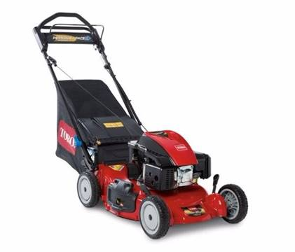 Toro Personal Pace 3-in-1