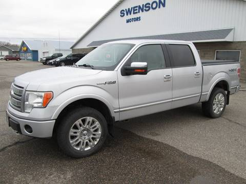 2009 Ford F-150 for sale in Gaylord, MN