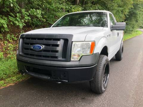 2010 Ford F-150 for sale at Lenoir Auto in Lenoir NC