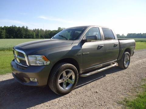 2009 Dodge Ram Pickup 1500 for sale at Town & Country Auto in Filion MI
