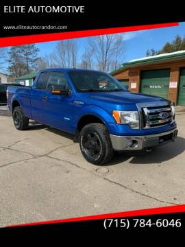 2012 Ford F-150 for sale at ELITE AUTOMOTIVE in Crandon WI