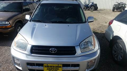 2002 Toyota RAV4 for sale in Salmon, ID