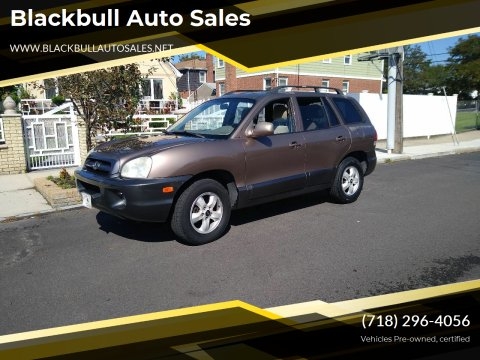 2005 Hyundai Santa Fe for sale at Blackbull Auto Sales in Ozone Park NY