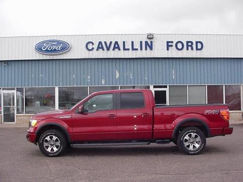 2013 Ford F-150 for sale in Pine City, MN