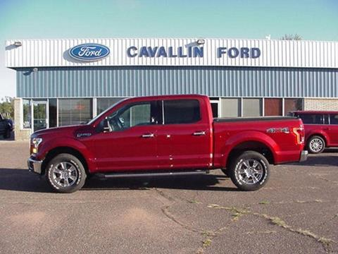 2015 Ford F-150 for sale in Pine City, MN