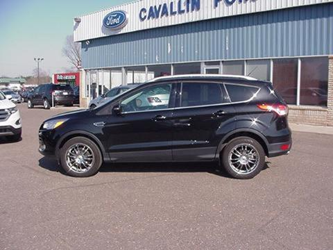 2014 Ford Escape for sale in Pine City MN
