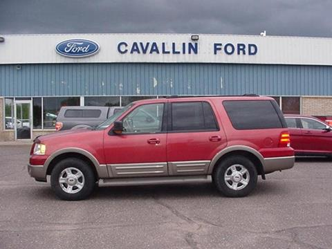 2003 Ford Expedition for sale in Pine City, MN