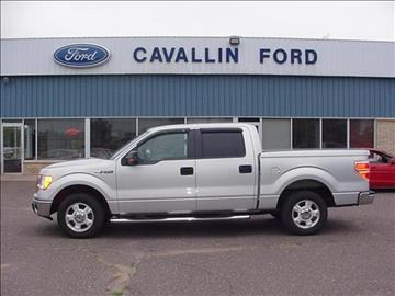 2009 Ford F-150 for sale in Pine City, MN