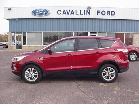 2017 Ford Escape for sale in Pine City, MN