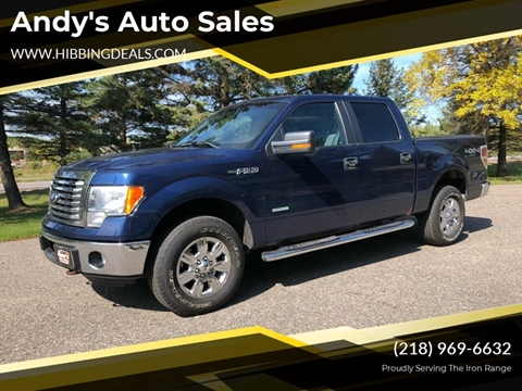 2011 Ford F-150 XLT for sale at Andy's Auto Sales in Hibbing MN