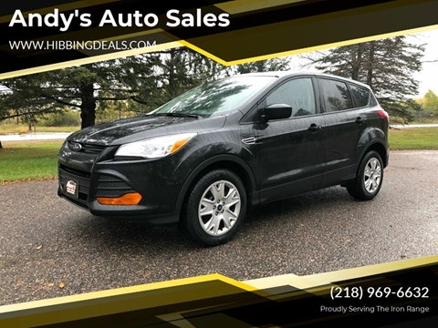 2013 Ford Escape S for sale at Andy's Auto Sales in Hibbing MN
