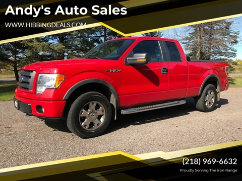2009 Ford F-150 FX4 for sale at Andy's Auto Sales in Hibbing MN