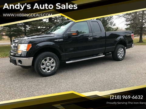2013 Ford F-150 XLT for sale at Andy's Auto Sales in Hibbing MN