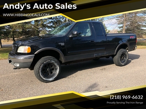 2003 Ford F-150 XLT for sale at Andy's Auto Sales in Hibbing MN