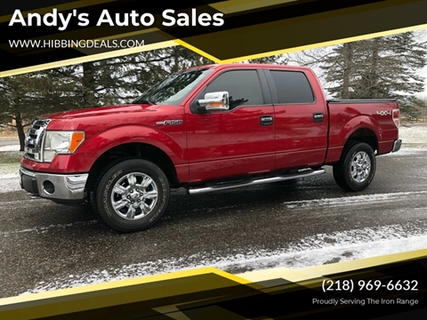 2009 Ford F-150 XLT for sale at Andy's Auto Sales in Hibbing MN